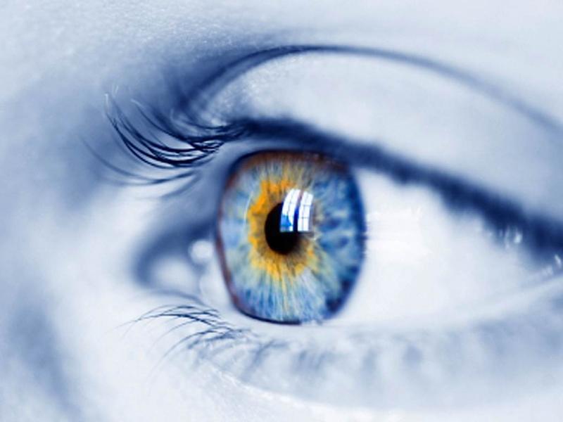 retina-criada-com-tecidos-biologicos-sinteticos-e-anunciada-no-reino-unido-thumb